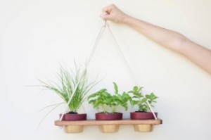cubbylove-productshoot-oh-hang-it-pot-it-trio-01